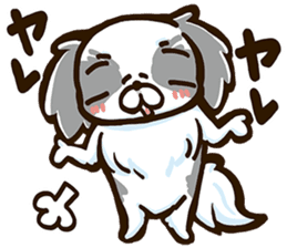 Japanese chin sticker 01 sticker #4617969