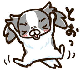 Japanese chin sticker 01 sticker #4617974
