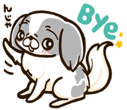 Japanese chin sticker 01 sticker #4617985