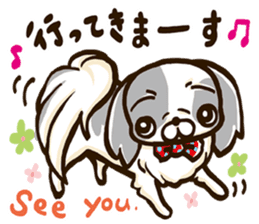 Japanese chin sticker 01 sticker #4617989