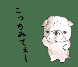 Friend of the bulldog sticker #4618724