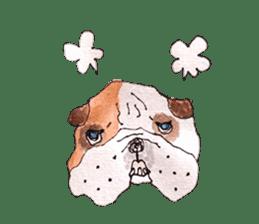 Friend of the bulldog sticker #4618746