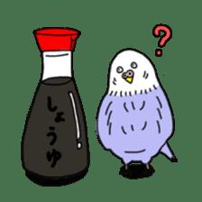 Funny Parakeet! sticker #4634328