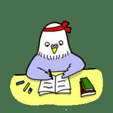 Funny Parakeet! sticker #4634330