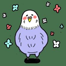 Funny Parakeet! sticker #4634331