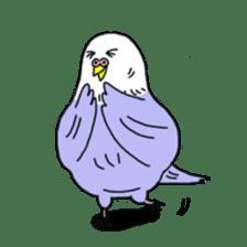 Funny Parakeet! sticker #4634353