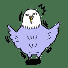 Funny Parakeet! sticker #4634354