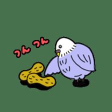 Funny Parakeet! sticker #4634355