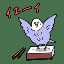 Funny Parakeet! sticker #4634356