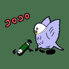 Funny Parakeet! sticker #4634359
