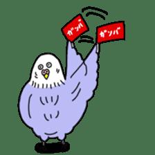 Funny Parakeet! sticker #4634364