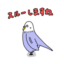 Funny Parakeet! sticker #4634365
