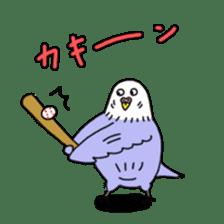 Funny Parakeet! sticker #4634367