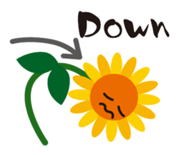 Sunflower field ( English ver. ) sticker #4644427