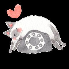 The siamese cat in love
