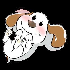 Cute Puppy 'Wini' in Roland Embley