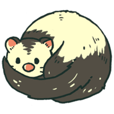 Ferret Sticker Vol.1 sticker #4660141