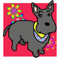 Cute Scottish Terriers