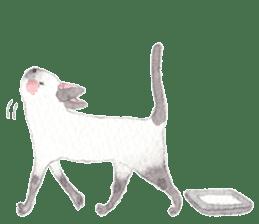 The siamese cat run hot and cold. sticker #4702512