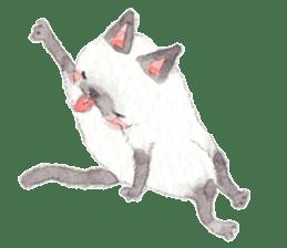 The siamese cat run hot and cold. sticker #4702520