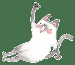 The siamese cat run hot and cold. sticker #4702526