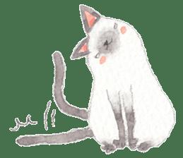 The siamese cat run hot and cold. sticker #4702544