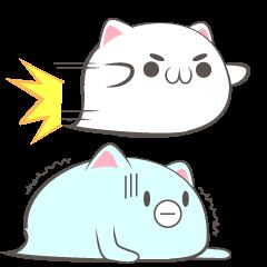 baloon cat