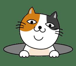 TAMAO of tortoiseshell cat sticker #4747736