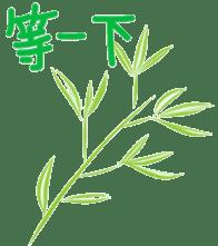 pandalife chinese sticker #4748979