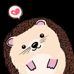 mimi hedgehog