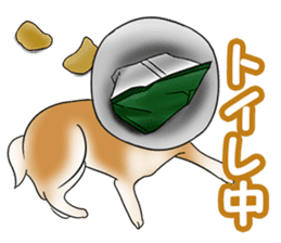 Potato chips dog. sticker #4753458