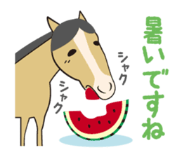 Daily horse sticker #4757975