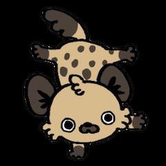 """Hyena """"Dapple"""""""