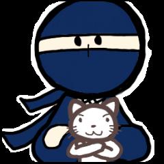 Ninja and cat