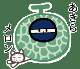 Ninja and cat sticker #4768913