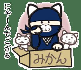 Ninja and cat sticker #4768915