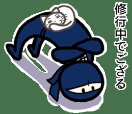 Ninja and cat sticker #4768942