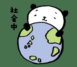 Studying Pandas sticker #4770703
