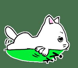 A white cat,a little,little bird sticker #4771649
