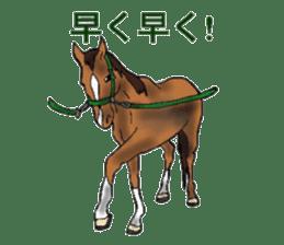 Sticker of horse lovers sticker #4772490