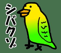 Dry birds sticker #4777229