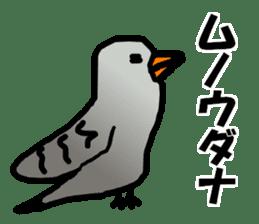 Dry birds sticker #4777230