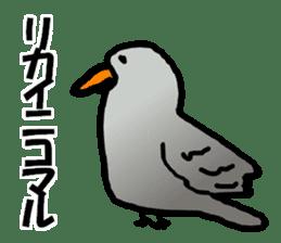 Dry birds sticker #4777239