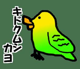 Dry birds sticker #4777240