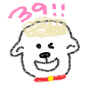 Coco of the sheep sticker #4779649