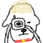 Coco of the sheep sticker #4779659