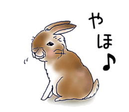 Small Rabbit strange dream sticker #4783562