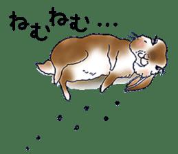 Small Rabbit strange dream sticker #4783563