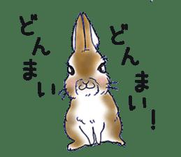 Small Rabbit strange dream sticker #4783567