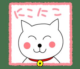 Cat named Shiro sticker #4784035